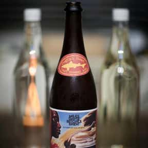 Dogfish Head Bitches Brew is listed (or ranked) 11 on the list The Best Dogfish Head Beers