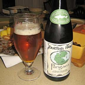 Dogfish Head Pangaea is listed (or ranked) 21 on the list The Best Dogfish Head Beers