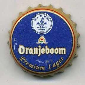 Oranjeboom Premium Lager is listed (or ranked) 6 on the list The Best Dutch Beers