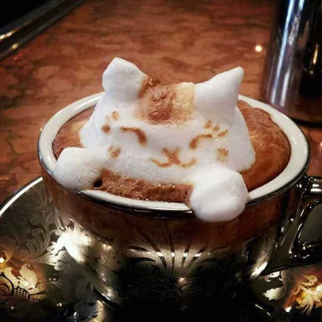 Latte Cat! is listed (or ranked) 2 on the list The Best Pictures of Food Art