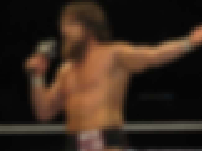 Daniel Bryan Vs the Wyatt Fami... is listed (or ranked) 7 on the list What was the Best 2013 WWE TLC PPV Match?
