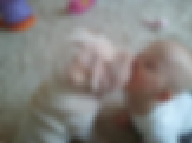 Shar Pei Kissing a Baby is listed (or ranked) 3 on the list The Cutest Shar Pei Pictures