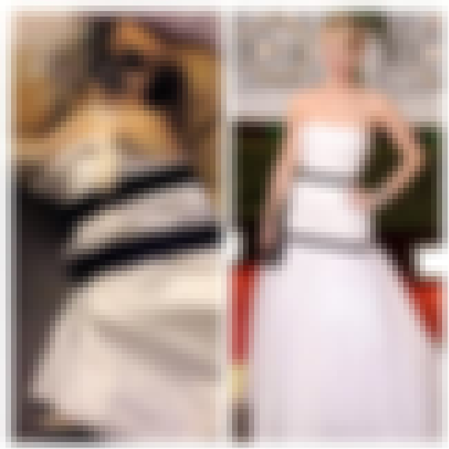 Dogs Love Fashion, Too is listed (or ranked) 3 on the list Jennifer Lawrence's Dress Inspires 'Lawrencing' Meme
