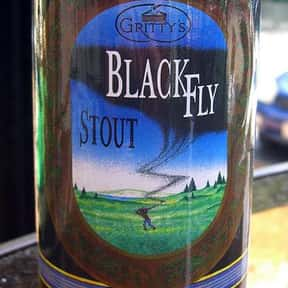 Gritty's Black Fly Stout is listed (or ranked) 21 on the list The Best Keg Beers