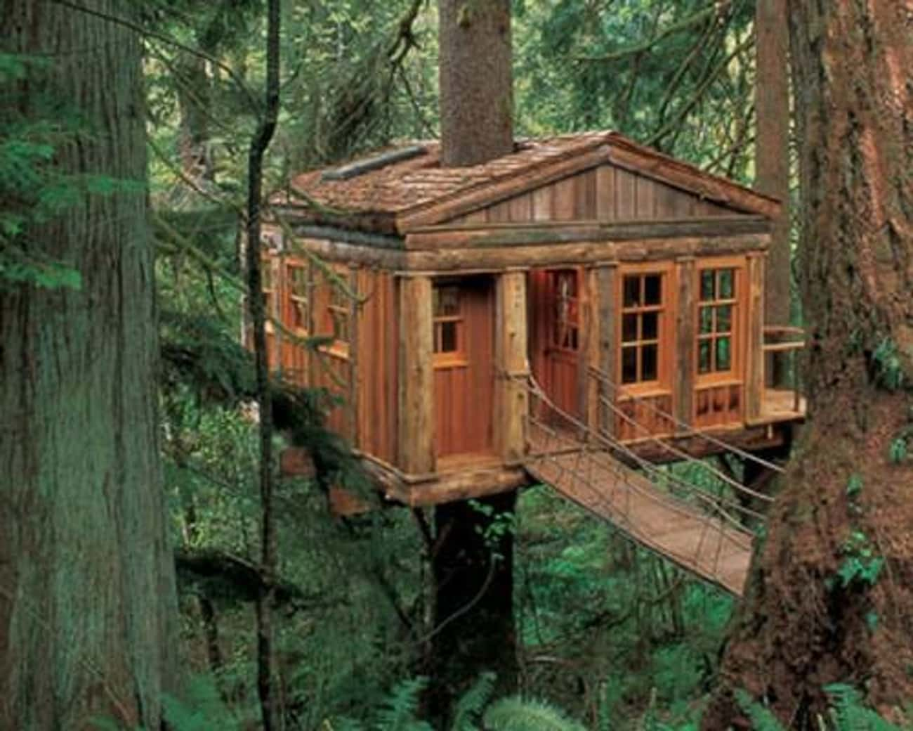 Temple of the Blue Moon is listed (or ranked) 4 on the list The Coolest Treehouses in the World