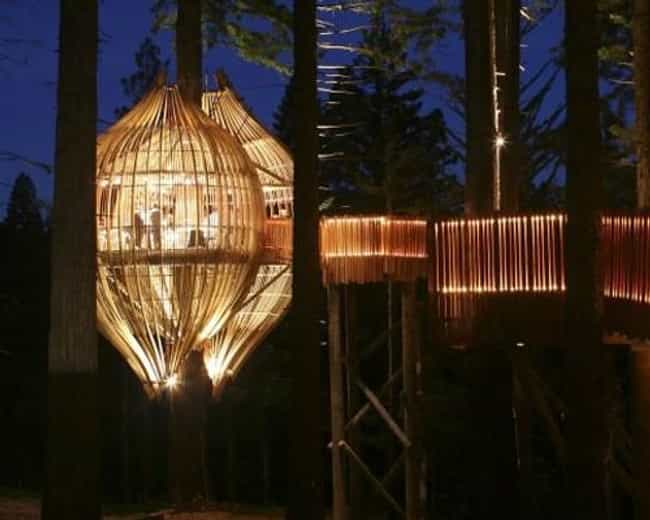treehouse restaurant is listed or ranked 4 on the list the coolest treehouses in