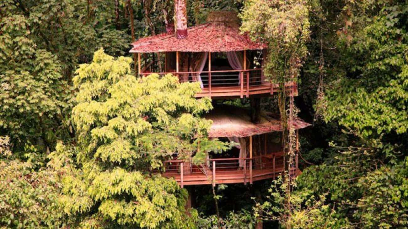 Mis Ojos is listed (or ranked) 3 on the list The Coolest Treehouses in the World
