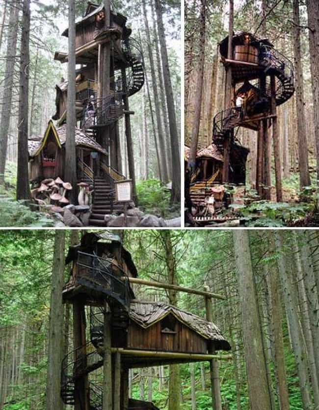 Fairytale Treehouse is listed (or ranked) 3 on the list The Coolest  Treehouses in