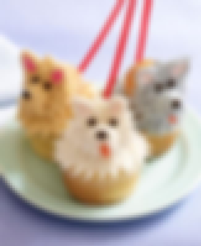 Doggies is listed (or ranked) 3 on the list 41 Epic Cupcake Art Pictures