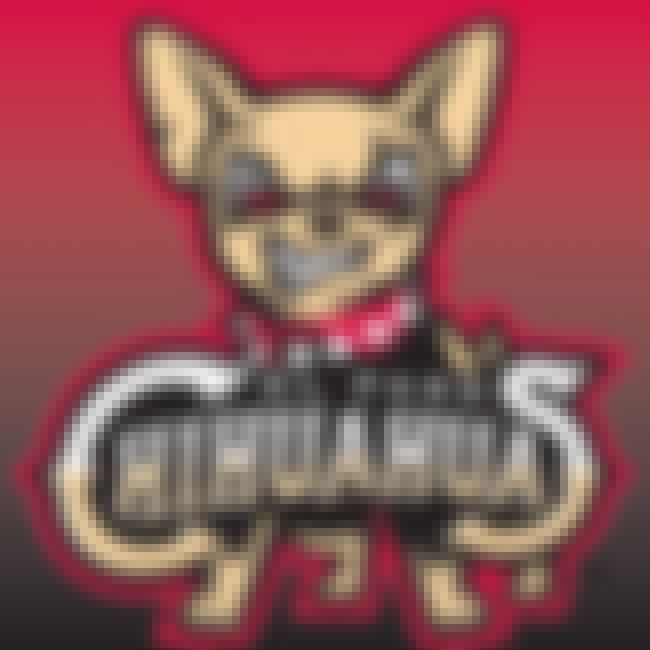 El Paso Chihuahuas is listed (or ranked) 4 on the list The Best Minor League Baseball Team Logos