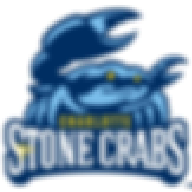 Charlotte Stone Crabs is listed (or ranked) 3 on the list The Best Minor League Baseball Team Logos