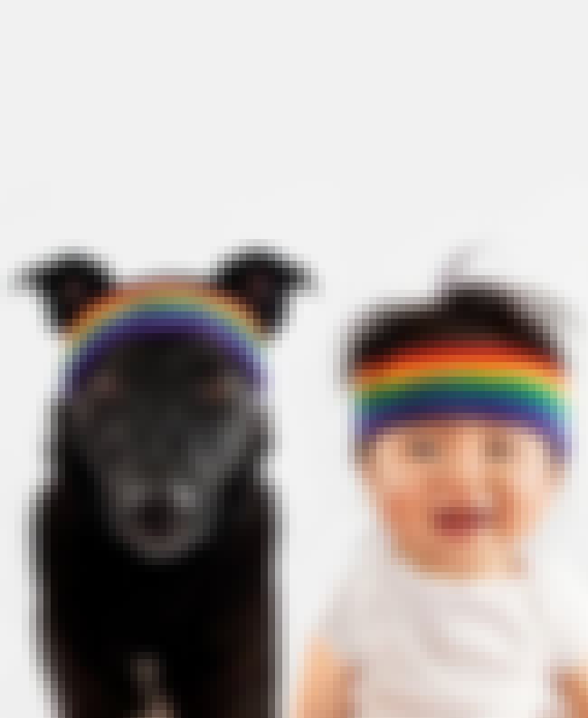 In Matching Rainbow Headbands is listed (or ranked) 2 on the list The Cutest Pictures of Zoey & Jasper