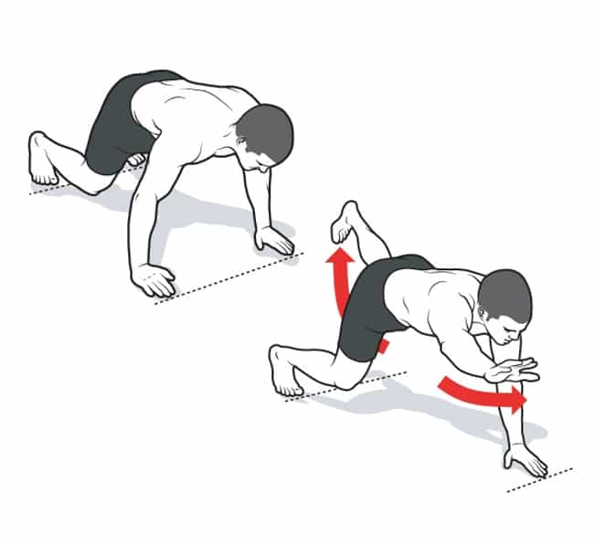 Elevated Bird Dog Reach is listed (or ranked) 4 on the list The Best Exercises You Can Do Without Any Equipment