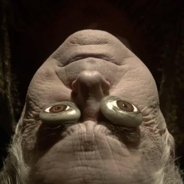 Image of Random Members Of House Arryn