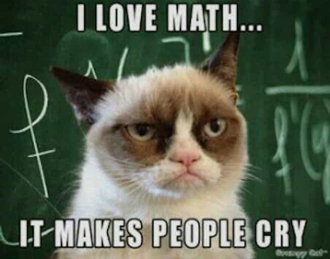 Grumpy Cat Likes Math is listed (or ranked) 1 on the list The Best Pictures of Grumpy Cat