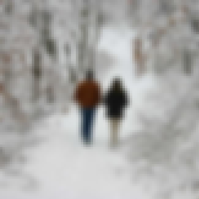 Bundle Up and Take a Walk is listed (or ranked) 4 on the list The Best Date Ideas for Cold Weather