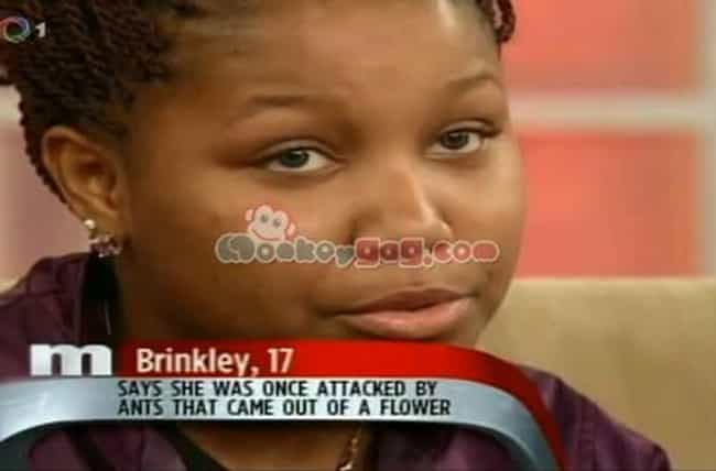 28 Ridiculous Daytime Talk Show Guest Captions