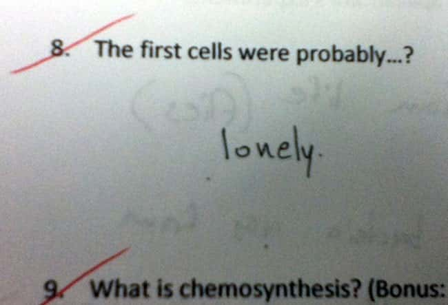 :'-( is listed (or ranked) 23 on the list 53 Hilarious Test Answers From Kids