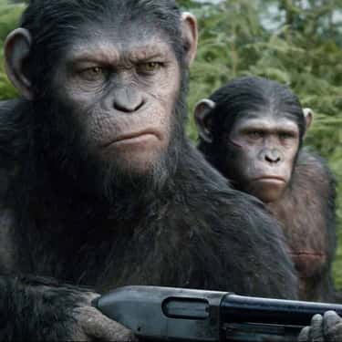 War Has Begun is listed (or ranked) 2 on the list Dawn of the Planet of the Apes Movie Quotes