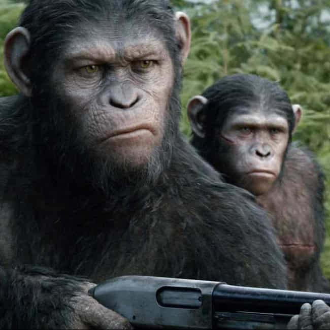 War Has Begun is listed (or ranked) 4 on the list Dawn of the Planet of the Apes Movie Quotes