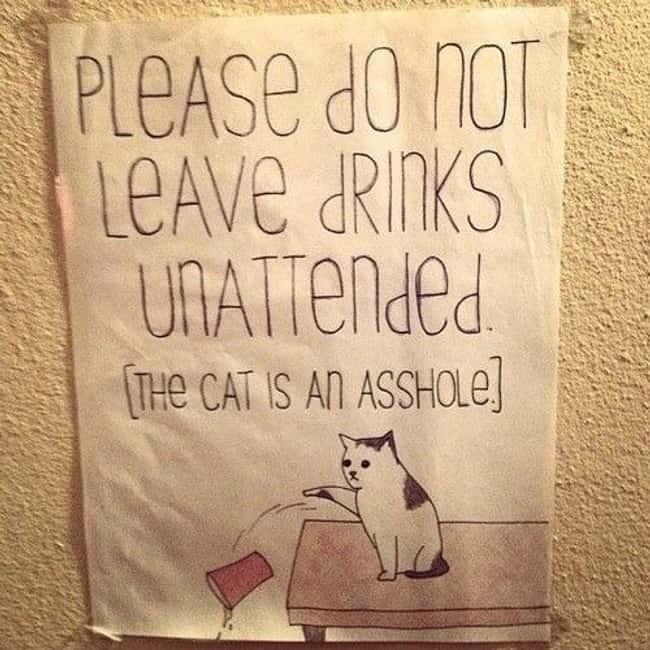 party advice photo u1?w=650&q=60&fm=jpg - Le top des panneaux anglais qui vous feront pouffer de rire