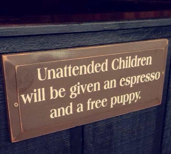 free puppies though photo u1?w=650&q=50&fm=jpg - Le top des panneaux anglais qui vous feront pouffer de rire