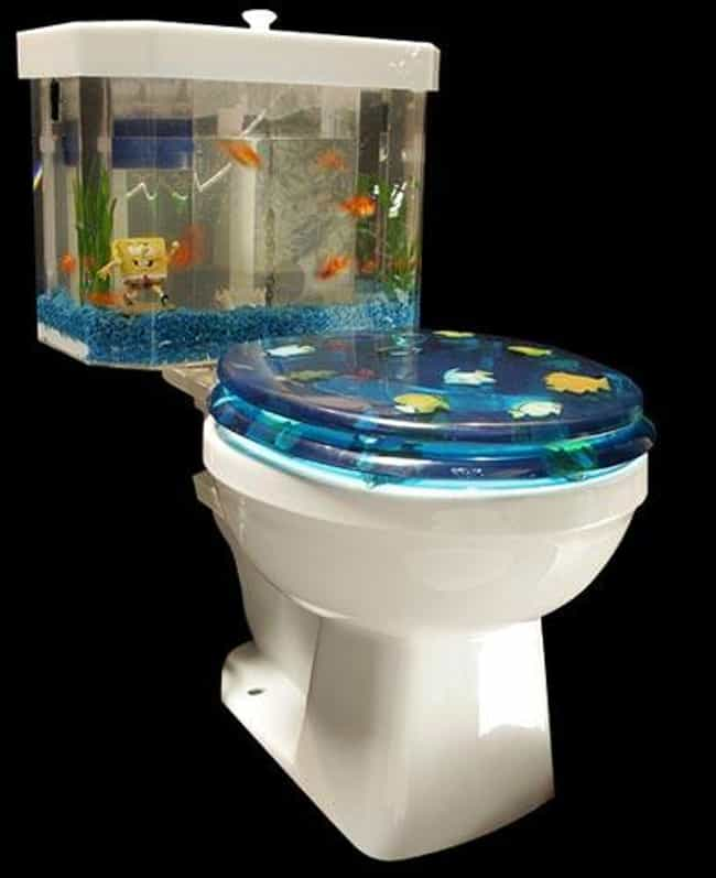 Weird & Funny Toilets | Bizarre Bathrooms and Urinals