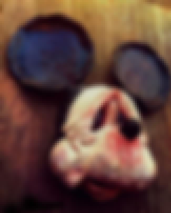 Old, Wrinkled Mickey is listed (or ranked) 1 on the list The 51 Most Terrifying Depictions of Mickey Mouse Ever