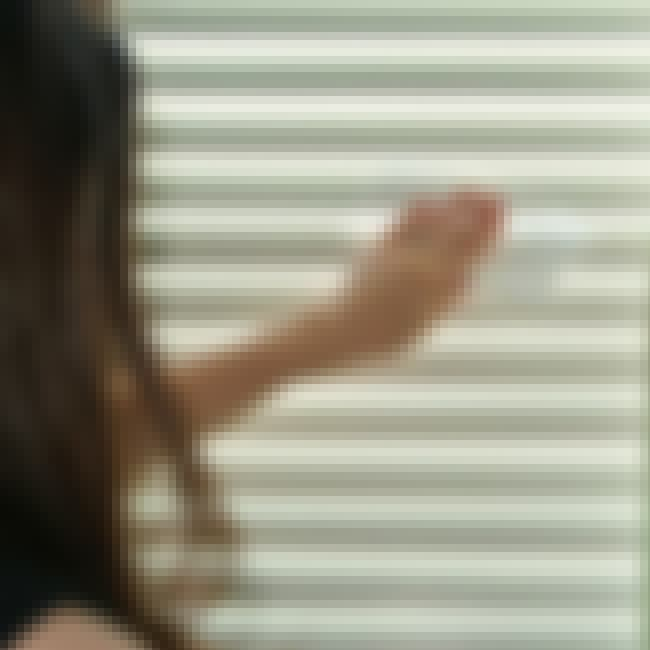 Dryer Sheets is listed (or ranked) 1 on the list The Best Ways to Clean Blinds