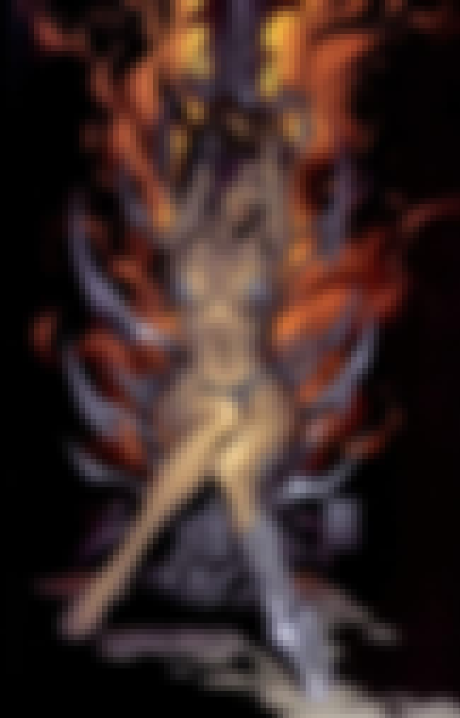 Witchblade is listed (or ranked) 1 on the list The Most Revealing Superheroine Costumes in Comics
