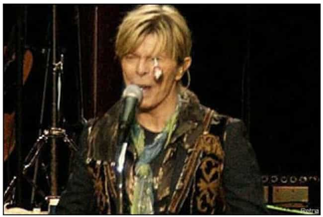 David Bowie - Lollipop is listed (or ranked) 3 on the list The Weirdest Things Ever Thrown at Musicians Onstage