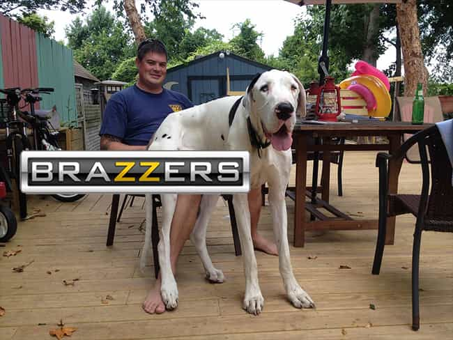 Innocent Pictures Ruined By The Brazzers Logo