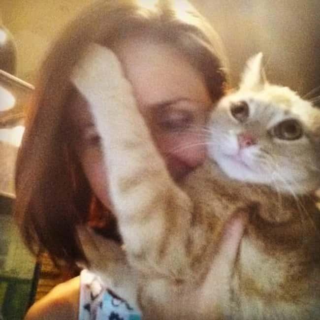 when the cat wants it to be all about her photo u1?w=650&q=60&fm=jpg - Les 20 selfies les plus ratés de tous les temps