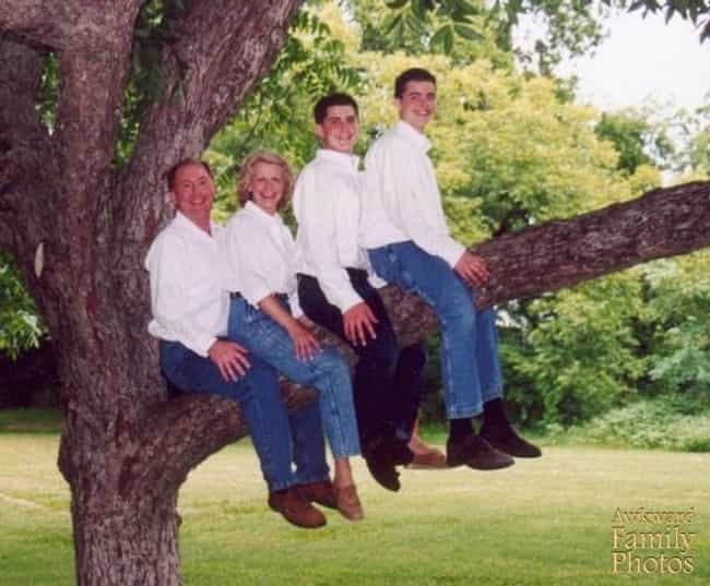 This Family with A Giant Treenis