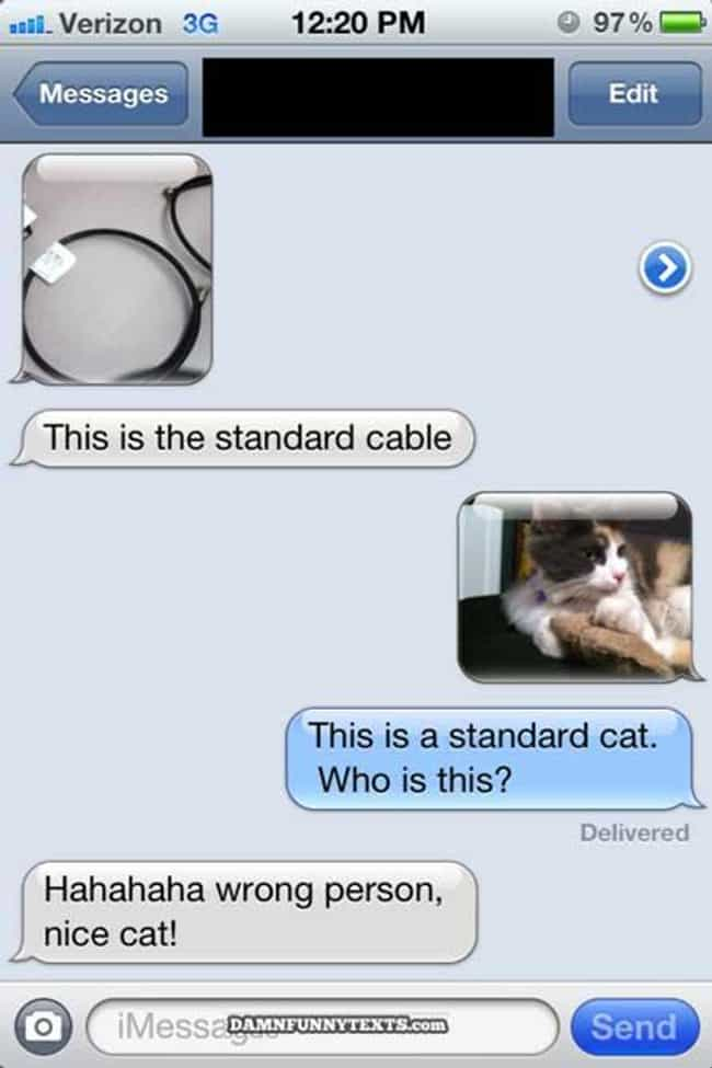 This IS a Cat! is listed (or ranked) 4 on the list 20 Hilariously Creative Responses to Wrong Number Texts