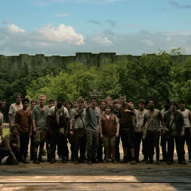 Time We Find Out What We... is listed (or ranked) 3 on the list The Maze Runner Movie Quotes