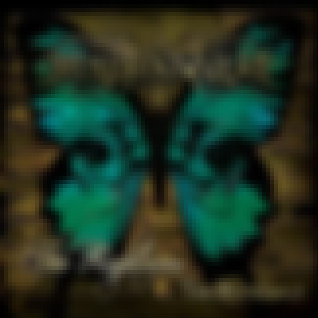 The Righteous & the Butterfly is listed (or ranked) 2 on the list The Best Mushroomhead Albums of All Time