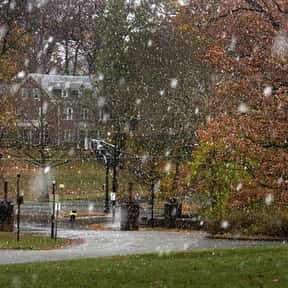 First Snowfall of the Year is listed (or ranked) 8 on the list The Very Best Things About Winter