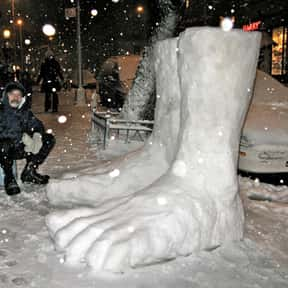 Snow in Socks/Shoes is listed (or ranked) 17 on the list The Absolute Worst Things About Winter