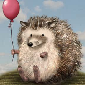Harry Hedgehog is listed (or ranked) 11 on the list The Greatest Hedgehog Characters of All Time