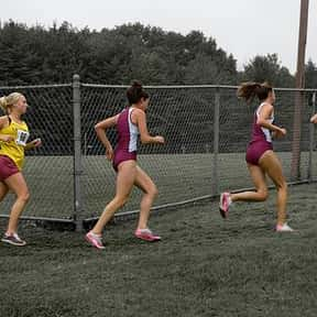 Cross Country Running is listed (or ranked) 13 on the list The Best Team Sports for Girls