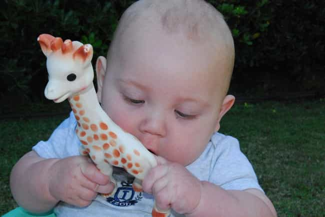 Sophie Giraffe is listed (or ranked) 2 on the list The Best Baby Products That Are Totally Worth It