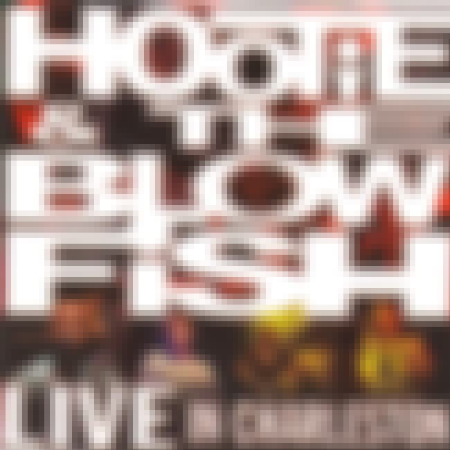 Live in Charleston is listed (or ranked) 4 on the list The Best Hootie & The Blowfish Albums of All Time