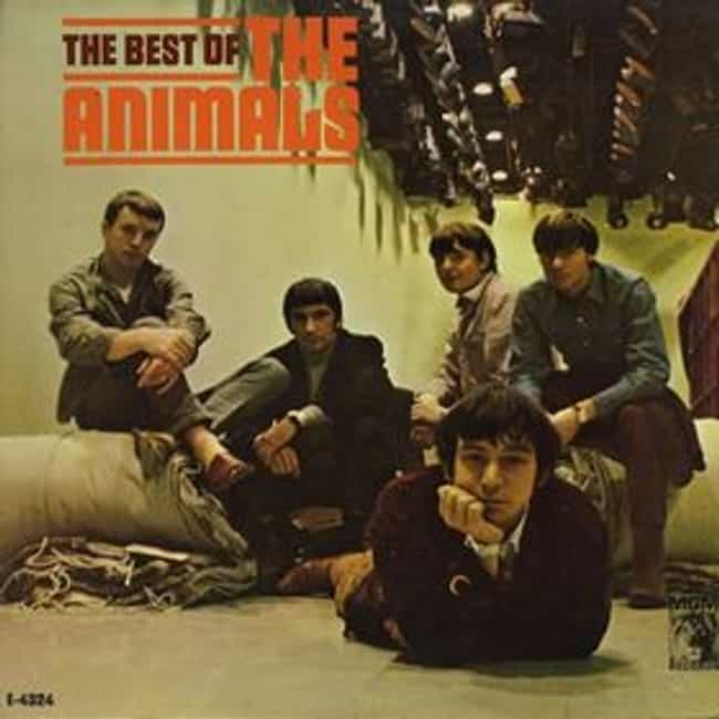 The Best of The Animals ... is listed (or ranked) 2 on the list The Best Animals Albums of All Time