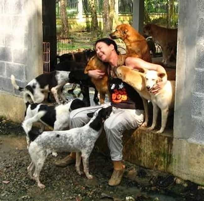 Gill Dalley of Soi Dog F... is listed (or ranked) 3 on the list Inspirational Stories of Humans Who Advocate for Dogs