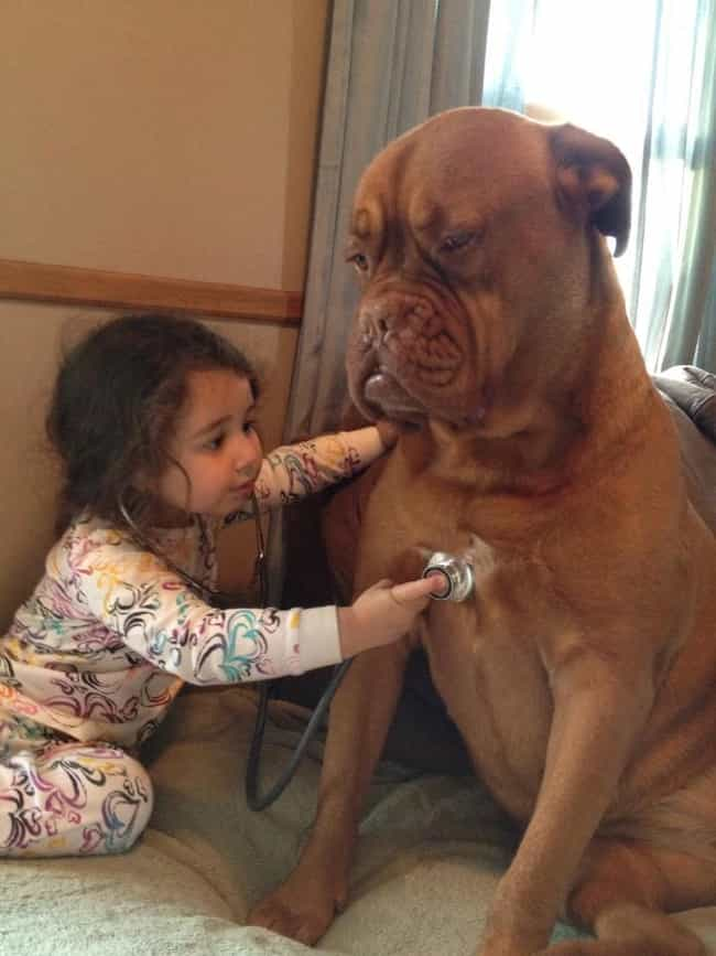 This Future Vet and Her Patien... is listed (or ranked) 4 on the list 47 Dogs and Babies Who Are Adorable Best Friends