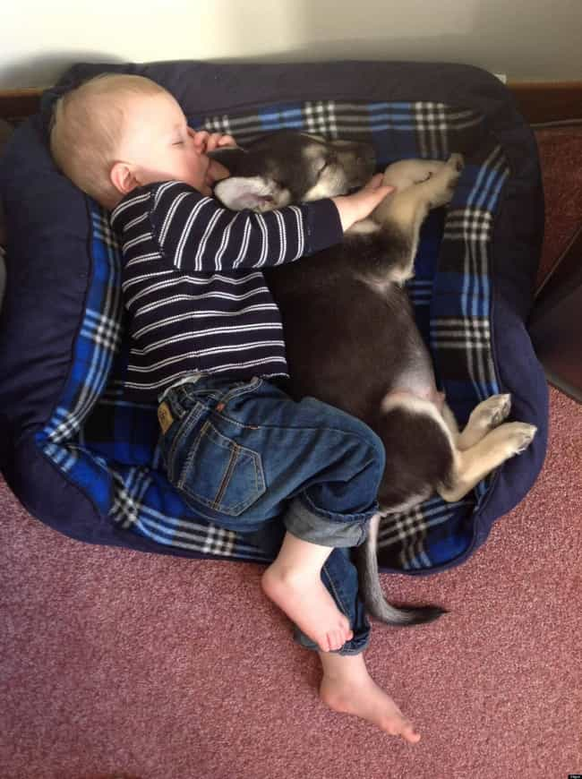This Baby and His Puppy Friend is listed (or ranked) 1 on the list 47 Dogs and Babies Who Are Adorable Best Friends