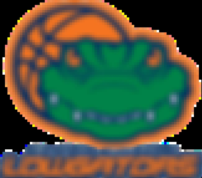 (North) Charleston Lowgators is listed (or ranked) 4 on the list All the Embarrassing NBA D-League Team Names