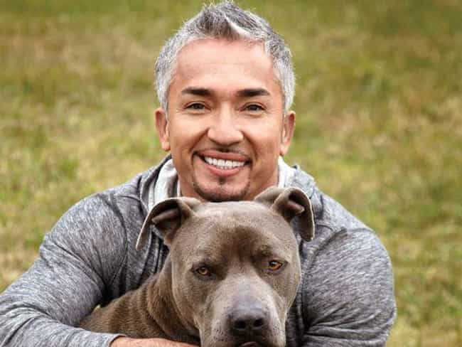 Cesar Millan is listed (or ranked) 4 on the list Celebrities Killed by the Internet
