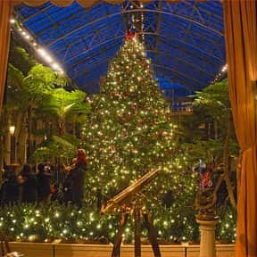 Christmas Tree is listed (or ranked) 13 on the list The Very Best Things About Winter